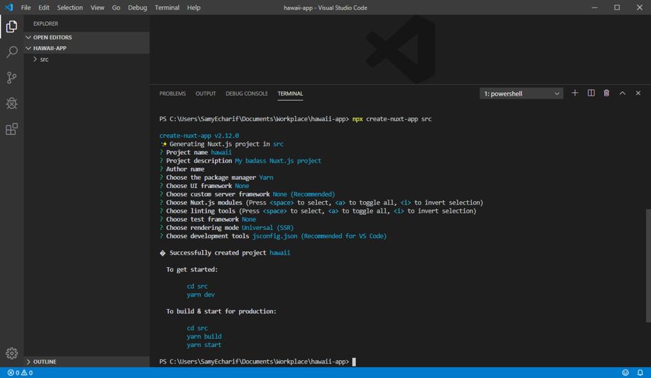 Page de développement NUXT