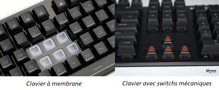Clavier à membrane et clavier avec switchs mécaniques